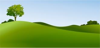 Landelijk landschap met groene gebieden royalty-vrije illustratie