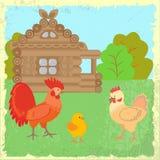Landelijk landschap met kippen en huis Royalty-vrije Stock Foto's