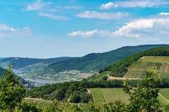 Landelijk landschap met mening bij wijngaarden, steden, heuvels en de Rijn-riviervallei Royalty-vrije Stock Fotografie