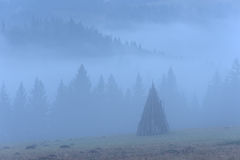 Landelijk landschap met mist Stock Afbeeldingen