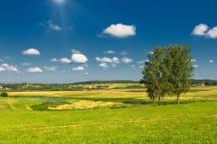 Landelijk landschap met twee bomen Stock Foto's