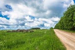 Landelijk landschap met vorig jaar` s hopen van hooi stock foto's