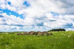 Landelijk landschap met vorig jaar` s hopen van hooi royalty-vrije stock foto