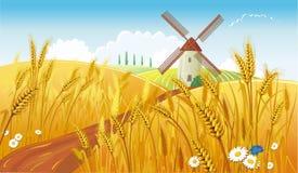 Landelijk landschap met windmolen Stock Foto's