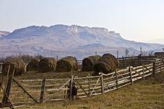 Landelijk landschap op een achtergrond van bergen Stock Foto