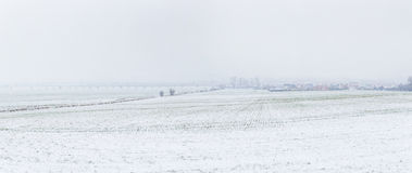 Landelijk landschap in Slechte Frankenhausen in sneeuw Stock Foto