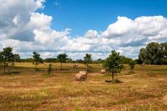 Landelijk landschap van gebied van hooibergen onder bewolkte hemel Stock Afbeeldingen