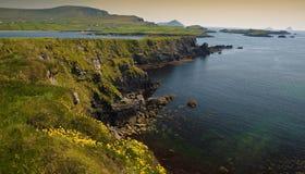 Landelijk landschap van ring Kerry Ierland royalty-vrije stock afbeelding
