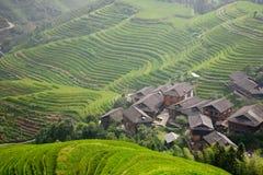 Landelijk landschap van terrassen Royalty-vrije Stock Foto's