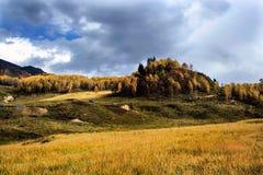 Landelijk landschapslandbouwbedrijf Stock Afbeelding