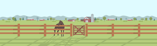 Landelijk landschapspanorama Stock Foto