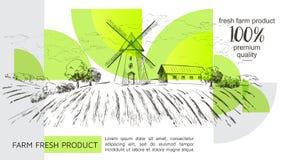 Landelijk Nederlands landschap met windmolen en tarwegebied Reeks van traditionele windmolen Bakkerijwinkel, organische landbouw royalty-vrije illustratie