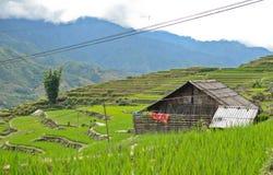 Landelijk Noord-Vietnam Stock Afbeelding