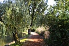 Landelijk park bij een de herfstdag Stock Fotografie