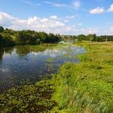 Landelijk rivierlandschap Stock Afbeeldingen