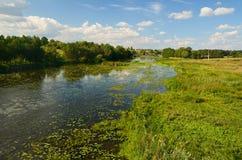 Landelijk rivierlandschap Stock Foto's