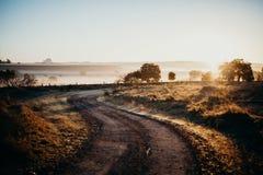 Landelijk spoor die een nevelige plattelandsweide kruisen bij dageraad Royalty-vrije Stock Afbeelding