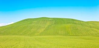 Landelijke achtergrond, rollende heuvel en groen gebiedenlandschap, Toscanië, Italië. Stock Foto's