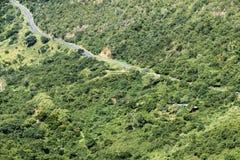 Landelijke Asphalt Road Winding Through Green-Vallei royalty-vrije stock afbeeldingen