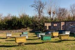 Landelijke bijenstal met kleurrijke bijenkorven Stock Fotografie