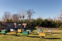 Landelijke bijenstal op een zonnige dag Stock Fotografie