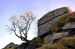 Landelijke Dartmoor met rotsen en duidelijke blauwe hemel Royalty-vrije Stock Foto