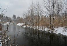 Landelijke de winterscène Royalty-vrije Stock Foto's