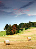 Landelijke Engelse Scène Stock Afbeelding
