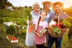 Landelijke familie tevreden met groentenproducten van tuin stock afbeeldingen