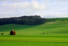 Landelijke gebiedsscène in Wiltshre Royalty-vrije Stock Foto's