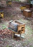 Landelijke houten bijenkorven Royalty-vrije Stock Afbeeldingen