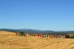 Landelijke houten bijenkorven op heuveltop Royalty-vrije Stock Afbeelding