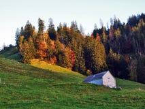Landelijke Landbouwbedrijven en de Traditionele Architectuur van Alt St Johann in Thur-Riviervallei stock afbeelding