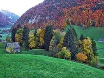 Landelijke Landbouwbedrijven en de Traditionele Architectuur van Alt St Johann in Thur-Riviervallei stock fotografie