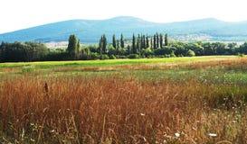 Landelijke landschappen Royalty-vrije Stock Foto's