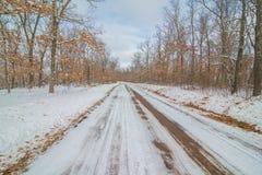 Landelijke rechte landweg in de sneeuwdiewinter door bos wordt omringd stock afbeeldingen
