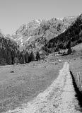 Landelijke route in de Alpen royalty-vrije stock fotografie