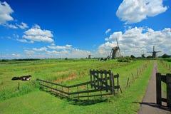 Landelijke scène van Kinderdijk Royalty-vrije Stock Fotografie