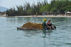Landelijke scène in Vietnam stock foto