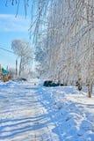 Landelijke straat in een de winterdag Stock Foto's
