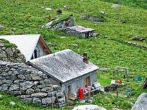 Landelijke traditionele architectuur en veelandbouwbedrijven in de alpiene vallei van Sernftal stock afbeelding