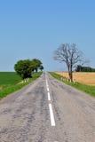 Landelijke weg Stock Fotografie