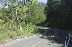 Landelijke weg die de berg te dalen door weelderig groen wordt omringd stock fotografie