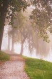 Landelijke weg door het de herfstpark op een nevelige ochtend Royalty-vrije Stock Afbeeldingen