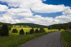 Landelijke weg in het zwarte bos Stock Foto's