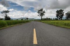 Landelijke weg met padievelden in Phayao, Thailand Stock Foto