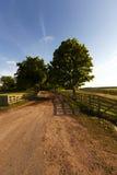 Landelijke weg, omheining Royalty-vrije Stock Fotografie
