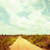 Landelijke weg, wijnoogst Stock Fotografie