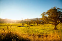 Landelijke zonsondergang royalty-vrije stock foto's