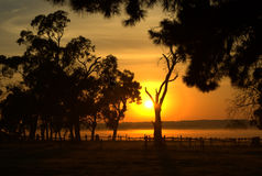 Landelijke zonsopgang Royalty-vrije Stock Afbeeldingen